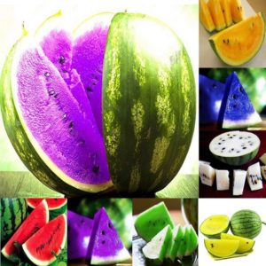 watermelon_seeds_fruit
